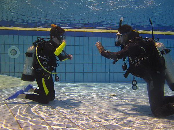 Start Diving Classes