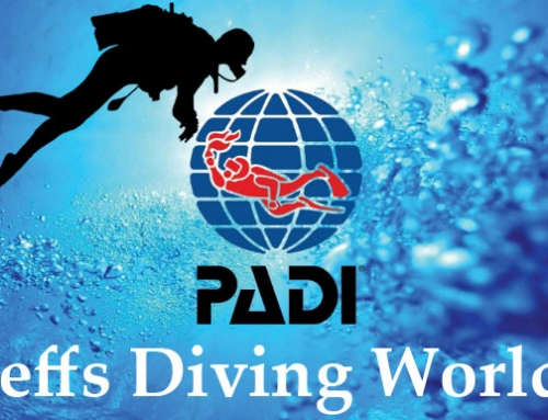 Congratulations to Newly Qualified Padi Divers