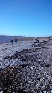 Beach Clean Sandbay