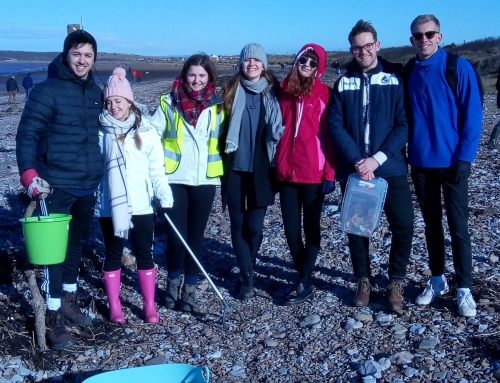 South End Sand Bay Beach Clean