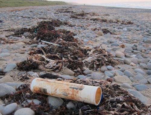 Winter Beach Clean Watchet Somerset